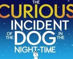 The Curious Incident in Cardiff